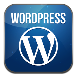 wordpress webdesign inkl. seo