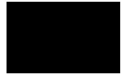 profiestetic_logo